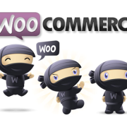 WooCommerce Security Release